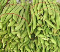 French Beans Meaning And Translation In Malayalam Tamil Kannada