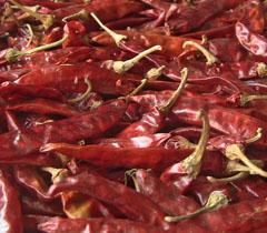 Red Chillies – pachakam.com